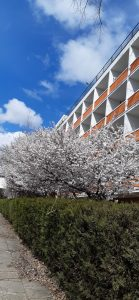 Hotel Belvedere Eforie Nord by Afrodor Resort 001