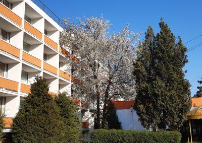 Hotel Belvedere Eforie Nord by Afrodor Resort 005